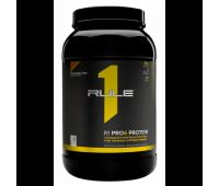 R1 Pro 6 Protein