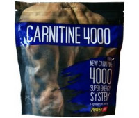 Power Pro Carnitine 4000